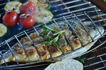 Stainless Steel Vs Porcelain Grill Grates